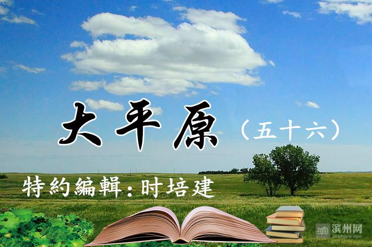 大平原(五十六)|人间微雨结轻阴