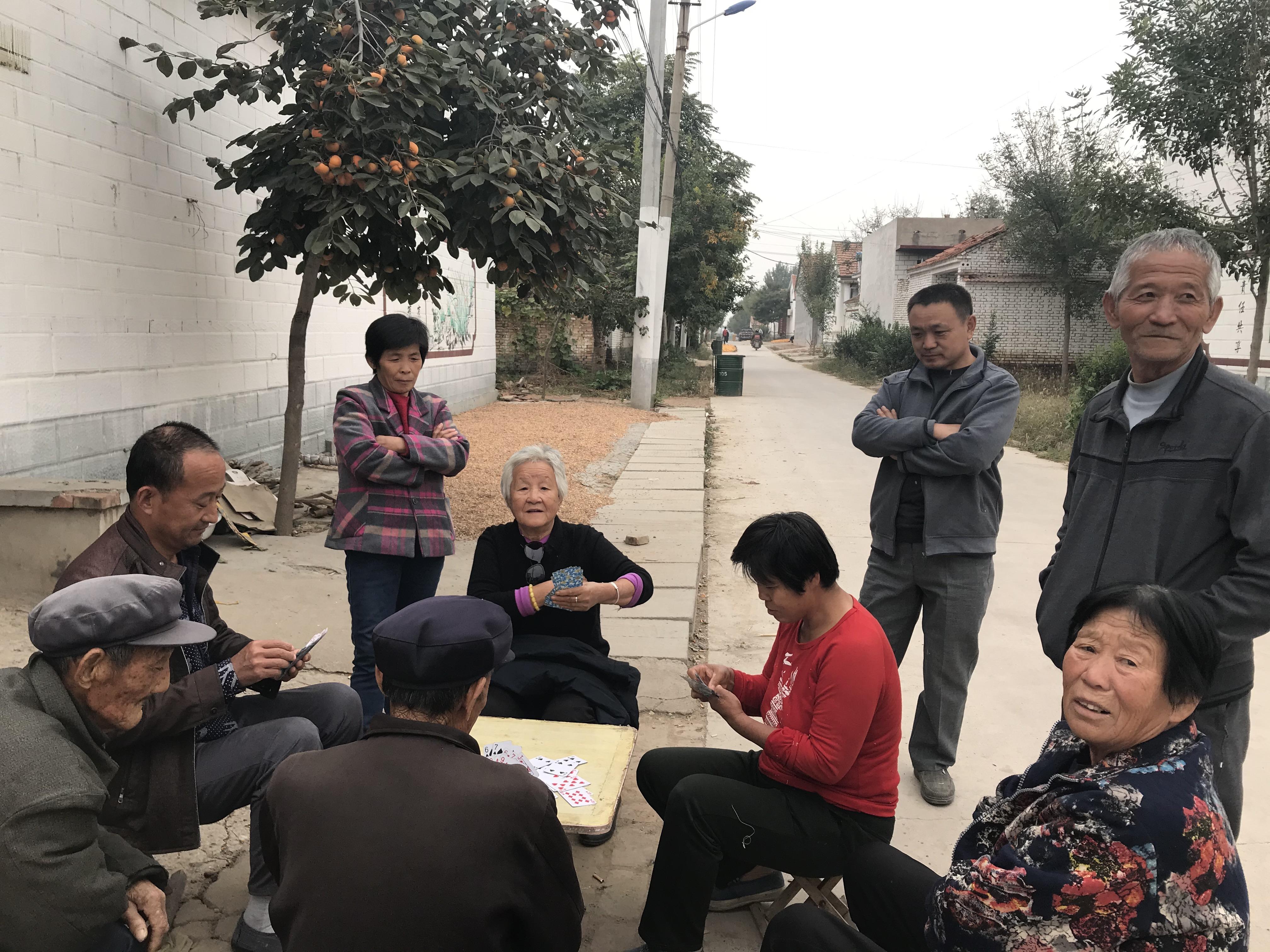 【共话幸福小康】南王村: 国庆中秋喜而不闲 建强产业增加收入