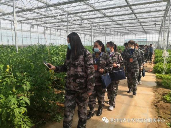 """2020年濱州""""三農""""故事?⑥14000余名高素質農民為鄉村振興注入強大內生動力"""