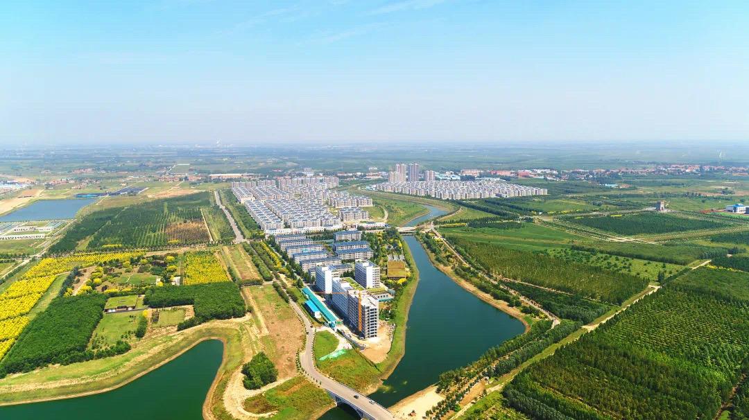 """2020年滨州""""三农""""故事之十一:乡村振兴齐鲁样板示范区省市县三级联创全面起势"""
