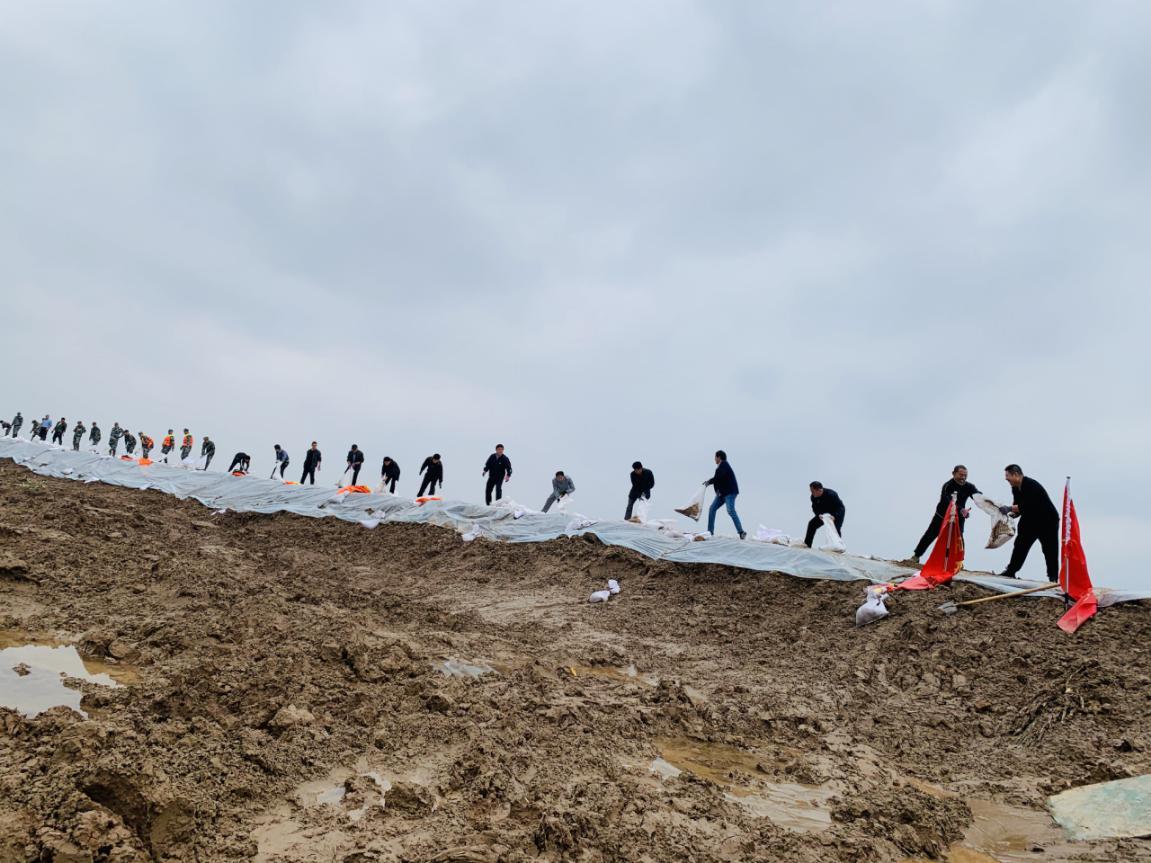 滨州黄河防汛一线,有一群乡村教师志愿者