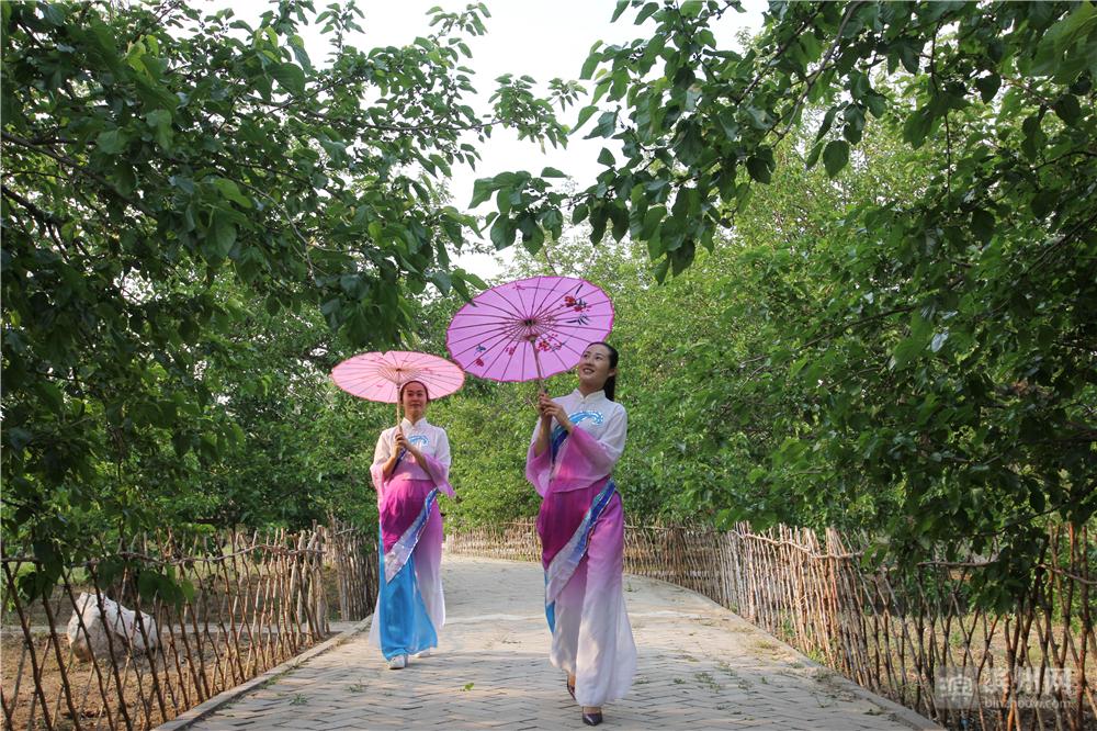 几位游客在古桑园里拍写真。